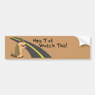 Watch This! Armadillo bumper sticker