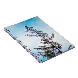 Watch Tower Spiral Notebooks