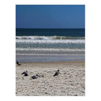 Watchin' the Tide Roll Away Postcard