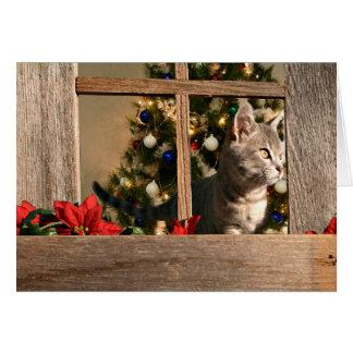 Watching for Santa Claus Greeting Card