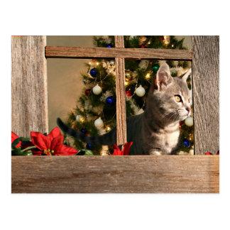 Watching for Santa Postcard