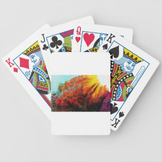 Watching the sun paint bicycle playing cards