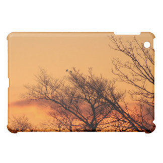 Watching the Sunrise iPad Mini Case