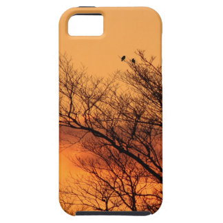 Watching the Sunrise iPhone 5 Covers