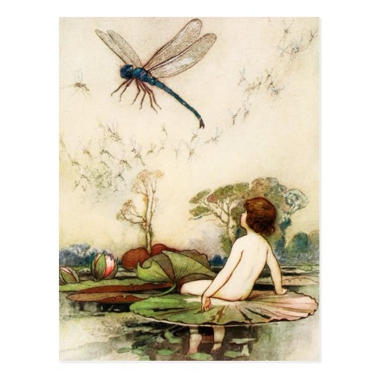 Water Baby and Dragon Fly Postcard