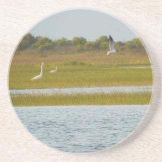 Water Birds Coaster