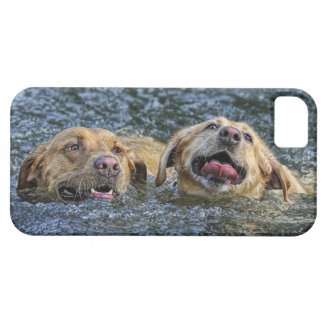 Water Bliss Labs iPhone 5 Covers