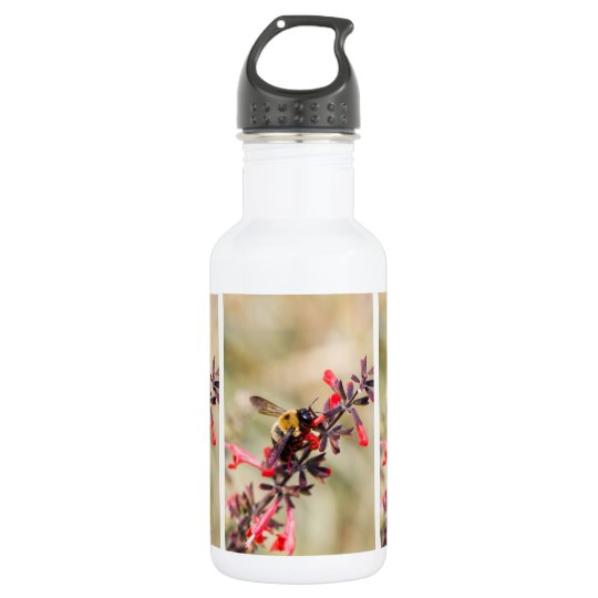 Water bottle with bee on salvia flower
