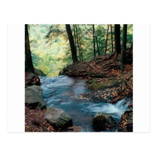 Water Buttermilk Falls Delaware Postcard