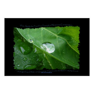 WATER CONSERVATION Leaf Drop Eco Poster