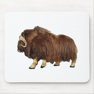 Water Days Mouse Pad