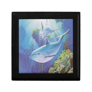 Water Dolphin Gift Box