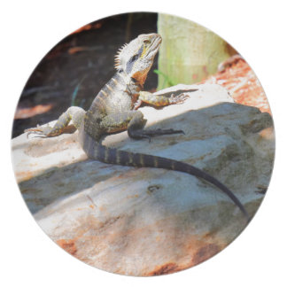 WATER DRAGON QUEENSLAND AUSTRALIA PARTY PLATE