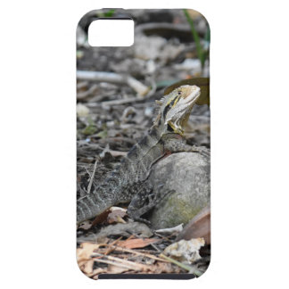 WATER DRAGON RURAL QUEENSLAND AUSTRALIA CASE FOR THE iPhone 5