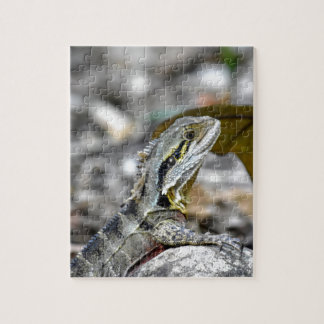WATER DRAGON RURAL QUEENSLAND AUSTRALIA JIGSAW PUZZLE