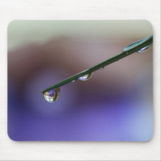WATER DRIPPING OFF A LEAF by Michelle Diehl Mouse Pad