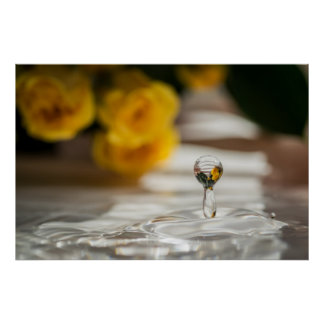 WATER DROP AND YELLOW ROSES by Michelle Diehl Poster