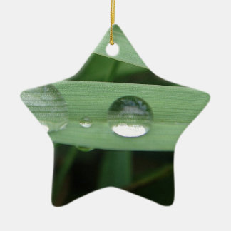 Water drop on blade of grass ceramic star ornament