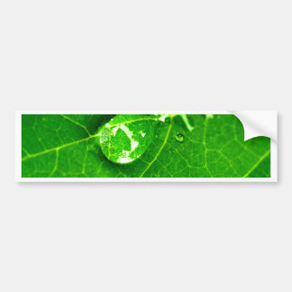 water drop on leaves bumper sticker