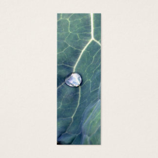 Water Droplet on a Cabbage Leaf Mini Business Card
