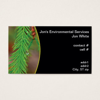 Water droplet on bald cypress foliage business card