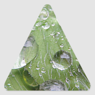 Water droplets on a green leaf triangle stickers