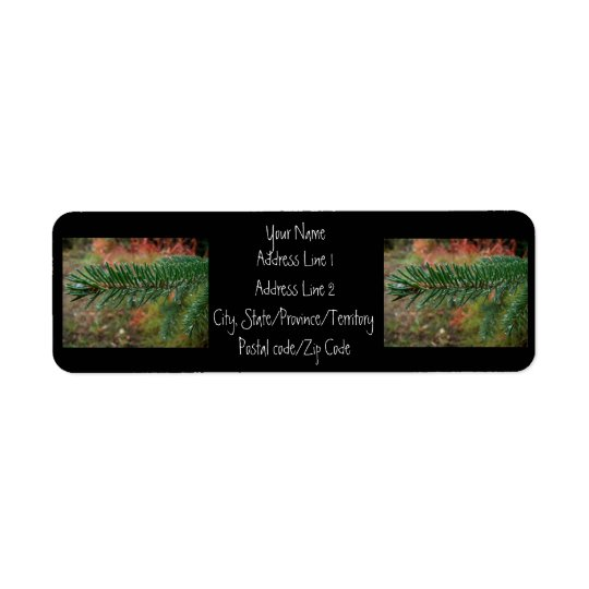 Water Droplets on Spruce Bough Return Address Label