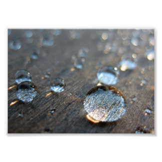 Water Droplets Photo Print