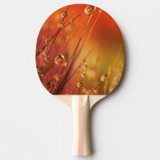 Water Drops on Blades of Grass Colorful Nature Ping-Pong Paddle