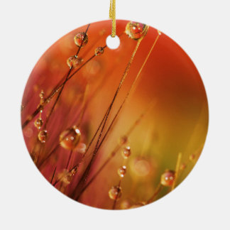 Water Drops on Blades of Grass Colorful Nature Round Ceramic Ornament