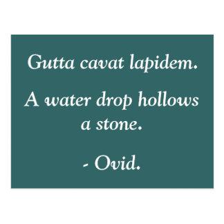 Water Drops Postcard