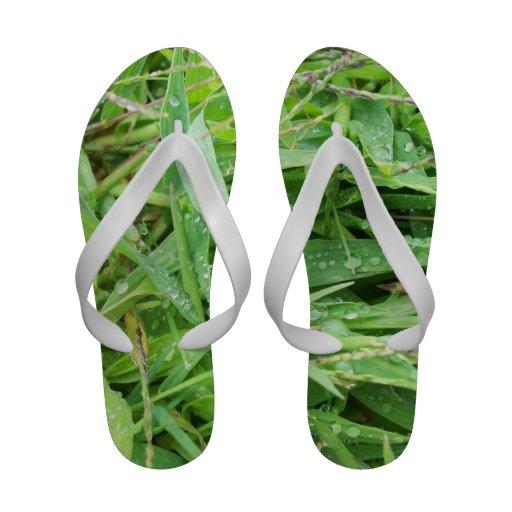 Water Drops Sandal Flip Flops
