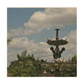 Water Fountain at Hollis Gardens Wood Print