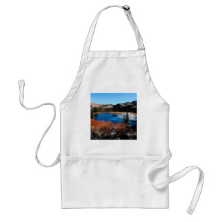 Water Frosty Beginning Standard Apron