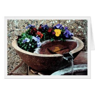 Water Garden Card