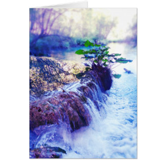 water haze greeting card