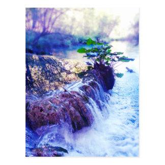 water haze postcard