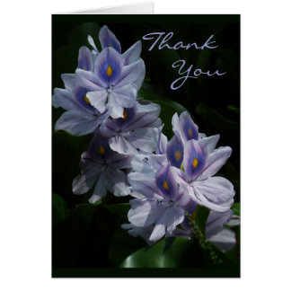 Water Hyacinths Thank You Note Card