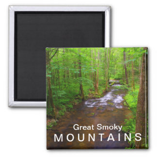 Water in the Great Smoky Mountains National Park Magnet