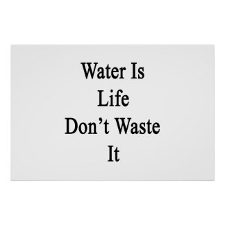 Water Is Life Don't Waste It Poster