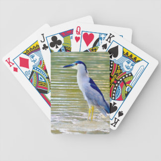 Water Kissed Bicycle Playing Cards