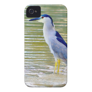 Water Kissed iPhone 4 Case