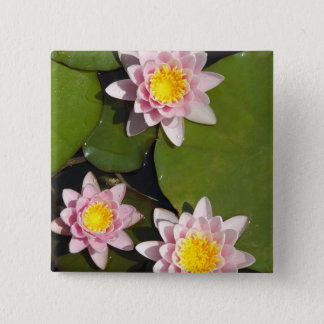 Water lilies 2 inch square button
