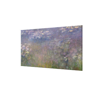 Water Lilies Agapanthus Canvas Print