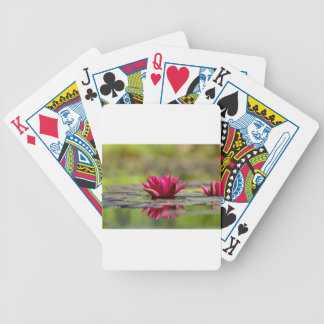 Water Lilies Bicycle Playing Cards