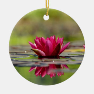 Water Lilies Ceramic Ornament