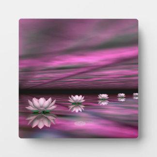 Water lilies steps the horizon - 3D render Plaque