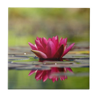 Water Lilies Tile