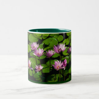 Water lilies Two-Tone coffee mug