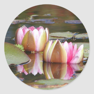 Water Lillies Classic Round Sticker